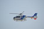 ja0hleさんが、名古屋飛行場で撮影したオールニッポンヘリコプター EC135T2の航空フォト(写真)
