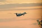 micky.y.さんが、伊丹空港で撮影したANAウイングス DHC-8-402Q Dash 8の航空フォト(写真)
