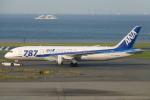 Bluewingさんが、羽田空港で撮影した全日空 787-8 Dreamlinerの航空フォト(写真)