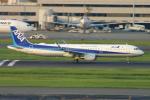 ころころさんが、羽田空港で撮影した全日空 A321-211の航空フォト(写真)