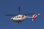 カンクンさんが、名古屋飛行場で撮影したセントラルヘリコプターサービス BK117C-1の航空フォト(写真)