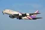 SKY☆101さんが、関西国際空港で撮影したタイ国際航空 A380-841の航空フォト(写真)
