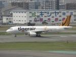 commet7575さんが、福岡空港で撮影したタイガーエア 台湾 A320-232の航空フォト(写真)