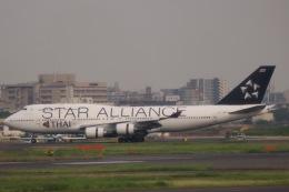 A350XWB-HNDさんが、羽田空港で撮影したタイ国際航空 747-4D7の航空フォト(写真)