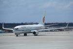AntonioKさんが、那覇空港で撮影した中国国際航空 737-89Lの航空フォト(写真)