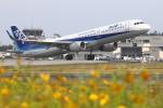 トリトンブルーSHIROさんが、庄内空港で撮影した全日空 A321-211の航空フォト(写真)