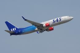 zettaishinさんが、フランクフルト国際空港で撮影したスカンジナビア航空 737-86Nの航空フォト(写真)
