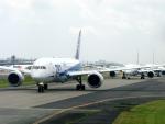 maverickさんが、成田国際空港で撮影した全日空 787-8 Dreamlinerの航空フォト(写真)