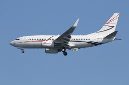 Gulf650Erさんが、羽田空港で撮影したルクオイル・アヴィア 737-7EM(BBJ)の航空フォト(写真)