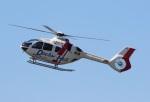 ショウさんが、八尾空港で撮影した学校法人ヒラタ学園 航空事業本部 EC135P3の航空フォト(写真)