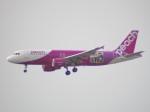 WLMさんが、仙台空港で撮影したピーチ A320-214の航空フォト(写真)