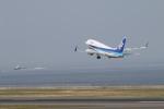カンタさんが、中部国際空港で撮影した全日空 737-781の航空フォト(写真)
