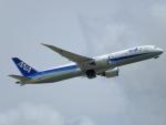 じゅんぼ〜さんが、成田国際空港で撮影した全日空 787-9の航空フォト(写真)