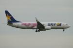 ceskykrumlovさんが、羽田空港で撮影したスカイマーク 737-86Nの航空フォト(写真)