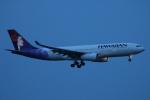 ceskykrumlovさんが、羽田空港で撮影したハワイアン航空 A330-243の航空フォト(写真)