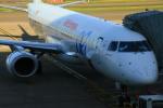 ちゅういちさんが、ブリュッセル国際空港で撮影したエア・ヨーロッパ ERJ-190-200 LR (ERJ-195LR)の航空フォト(写真)