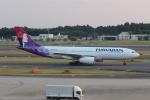 ショウさんが、成田国際空港で撮影したハワイアン航空 A330-243の航空フォト(写真)