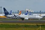 よしポンさんが、成田国際空港で撮影した厦門航空 737-85Cの航空フォト(写真)