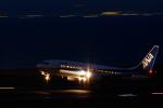 AKYさんが、中部国際空港で撮影した全日空 737-881の航空フォト(写真)