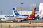 panchiさんが、成田国際空港で撮影した海南航空 737-84Pの航空フォト(写真)