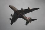 MI-YANさんが、成田国際空港で撮影したエミレーツ航空 A380-861の航空フォト(写真)