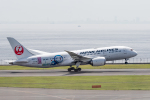 Y-Kenzoさんが、羽田空港で撮影した日本航空 787-8 Dreamlinerの航空フォト(写真)