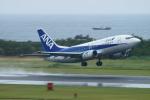 kij niigataさんが、新潟空港で撮影したANAウイングス 737-5L9の航空フォト(写真)