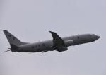 Aurora56さんが、厚木飛行場で撮影したアメリカ海軍 P-8A (737-8FV)の航空フォト(写真)
