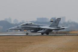 厚木飛行場 - Naval Air Facility Atsugi [NJA/RJTA]で撮影された厚木飛行場 - Naval Air Facility Atsugi [NJA/RJTA]の航空機写真