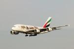 RinRinFlyさんが、成田国際空港で撮影したエミレーツ航空 A380-861の航空フォト(写真)