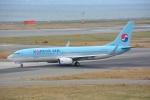 SKY☆101さんが、関西国際空港で撮影した大韓航空 737-8Q8の航空フォト(写真)