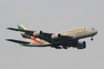 こだしさんが、成田国際空港で撮影したエミレーツ航空 A380-861の航空フォト(写真)