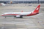 キイロイトリ1005fさんが、関西国際空港で撮影した上海航空 737-86Nの航空フォト(写真)