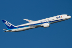 Gyoza_さんが、羽田空港で撮影した全日空 787-9の航空フォト(写真)