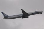 木人さんが、成田国際空港で撮影した全日空 777-381/ERの航空フォト(写真)