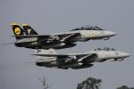 Talon.Kさんが、オシアナ海軍航空基地アポロソーセックフィールドで撮影したアメリカ海軍 F-14D Tomcatの航空フォト(写真)