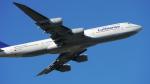 lufthansa9919さんが、フランクフルト国際空港で撮影したルフトハンザドイツ航空 747-830の航空フォト(写真)