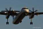 gucciyさんが、伊丹空港で撮影したANAウイングス DHC-8-402Q Dash 8の航空フォト(写真)