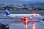 kurubouzuさんが、伊丹空港で撮影した全日空 767-381/ERの航空フォト(写真)