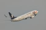 おぺちゃんさんが、関西国際空港で撮影した山東航空 737-85Nの航空フォト(写真)