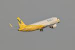 おぺちゃんさんが、関西国際空港で撮影したバニラエア A320-214の航空フォト(写真)