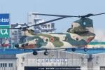tabi0329さんが、福岡空港で撮影した航空自衛隊 CH-47J/LRの航空フォト(写真)
