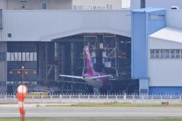 md11jbirdさんが、伊丹空港で撮影したピーチ A320-214の航空フォト(写真)