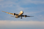 Orcaさんが、羽田空港で撮影した全日空 787-8 Dreamlinerの航空フォト(写真)