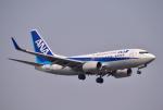 hirohiro77さんが、新千歳空港で撮影した全日空 737-781の航空フォト(写真)
