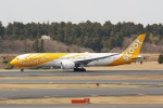 OS52さんが、成田国際空港で撮影したスクート 787-9の航空フォト(写真)