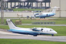 なごやんさんが、嘉手納飛行場で撮影したアメリカ空軍 C-146A Wolfhoundの航空フォト(写真)