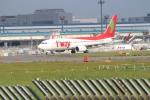 空とぶイルカさんが、成田国際空港で撮影したティーウェイ航空 737-8ASの航空フォト(写真)