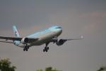 空とぶイルカさんが、成田国際空港で撮影した大韓航空 A330-323Xの航空フォト(写真)