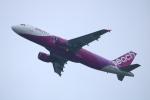 水月さんが、関西国際空港で撮影したピーチ A320-214の航空フォト(写真)